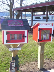 Little Free Library Kids Addition